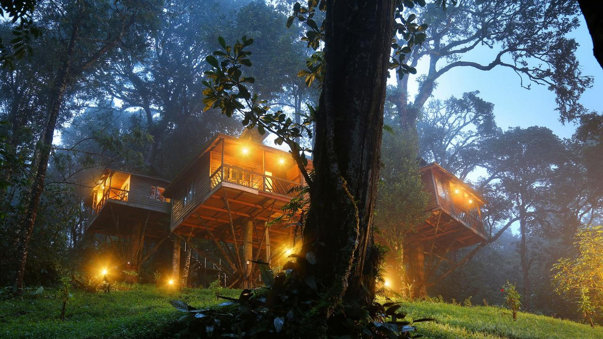 nature-zone-resort-munnar