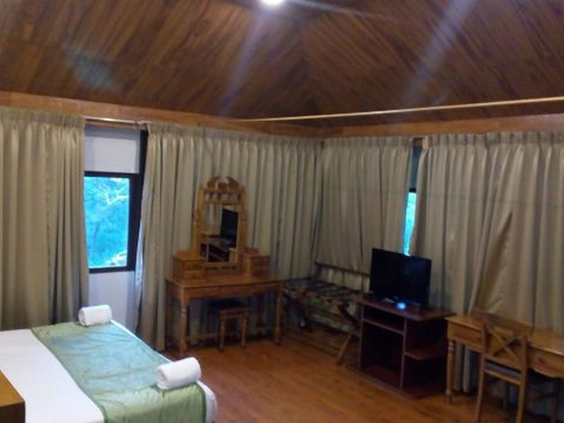 deep-woods-resort-munnar18-1538459792.jpg