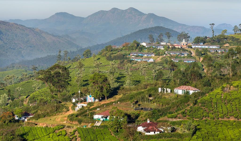 Best Season to Visit Munnar in Kerala