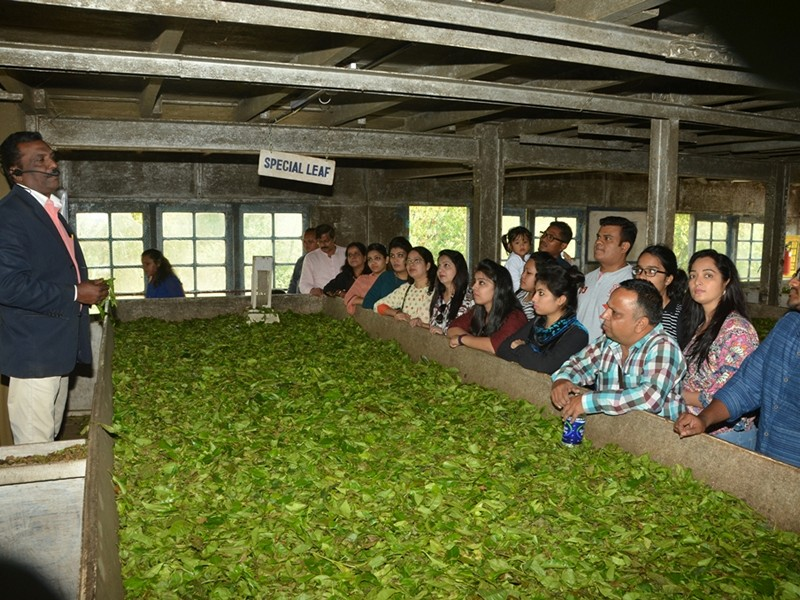 Explore 100 year Lockhart Tea Museum and Factory Munnar