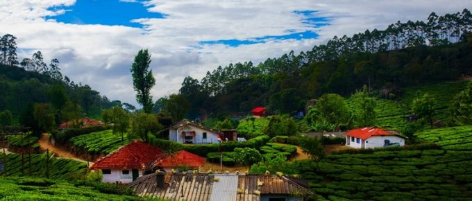 Top 15 Must Visit Munnar Tourist Places