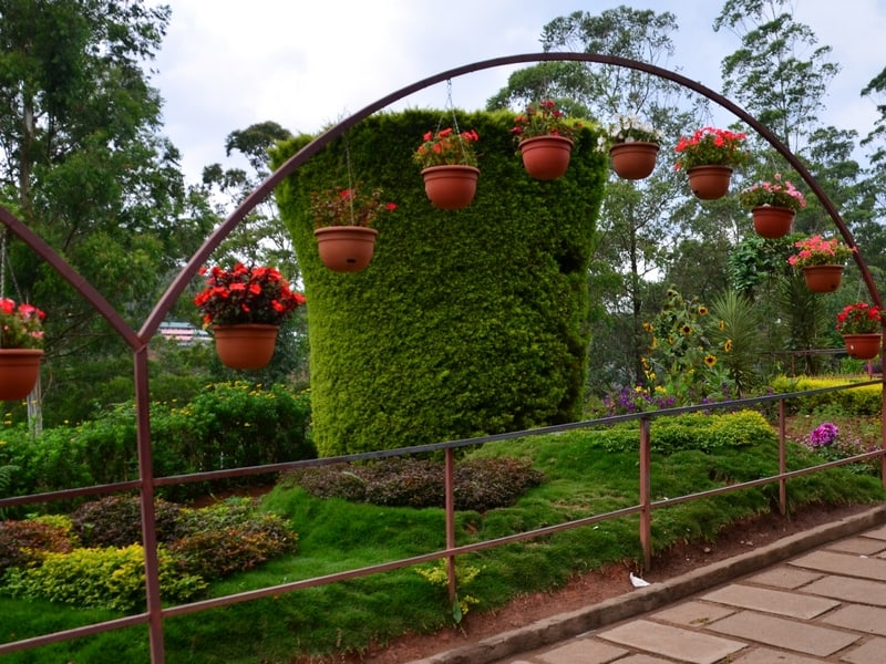 Rose Garden Munnar-Entry Fee, Timings, Images & Best Time to Visit (Updated)